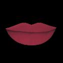 Abbes Cosmetics Matte Liquid Lipstick Bossy