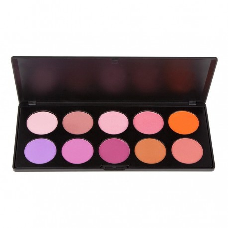 Costal Scents Blush Too Palette
