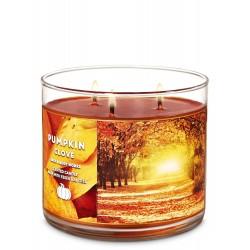Bath & Body Works Pumpkin Clove 3 Wick Scented Candle
