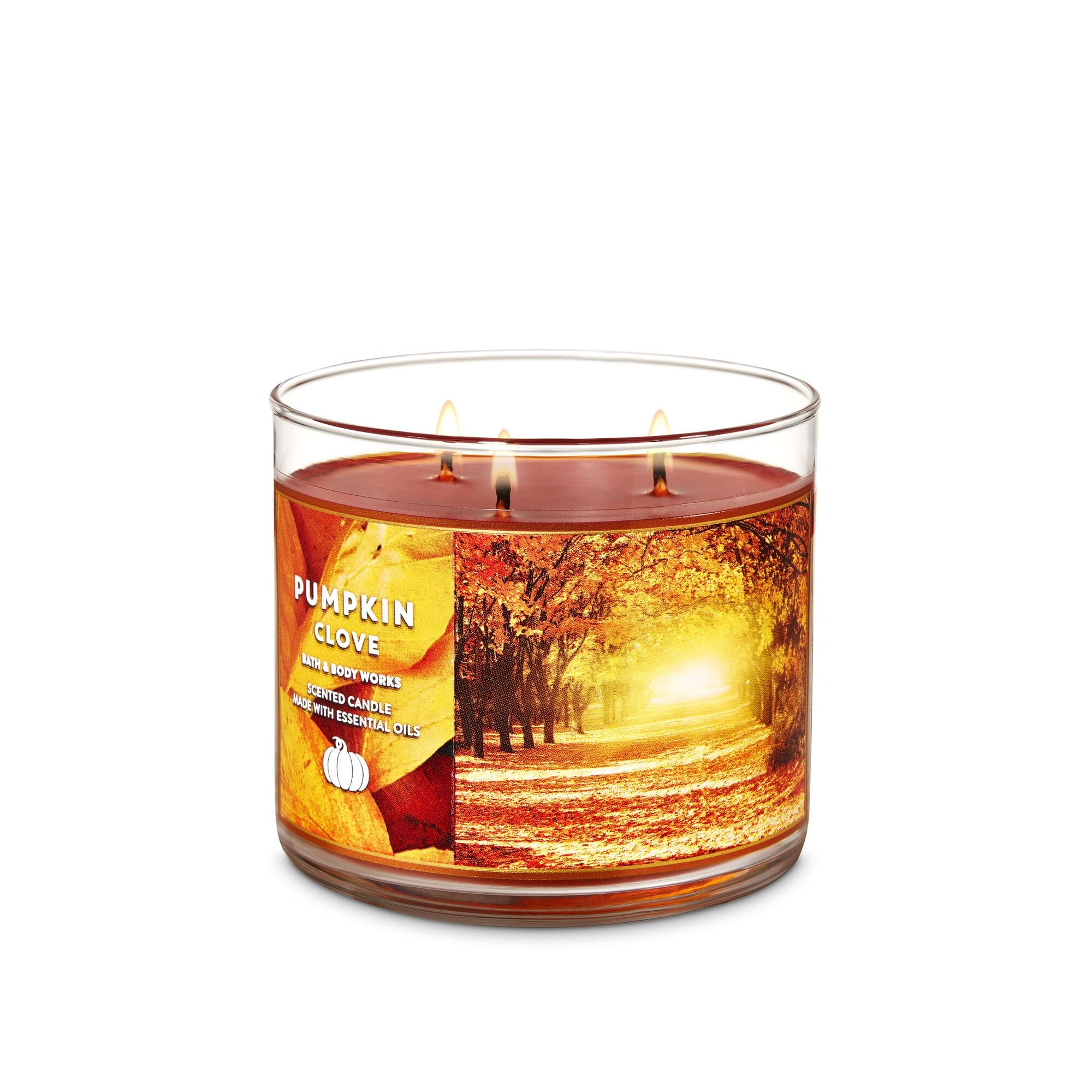 Bath & Body Works Pumpkin Clove 3 Wick Scented Candle