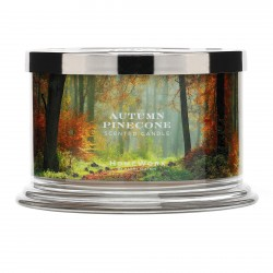 Homeworx by Harry Slatkin Autumn Pinecone 4 Wick Candle