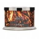 Homeworx by Harry Slatkin Autumn Bonfire 4 Wick Candle