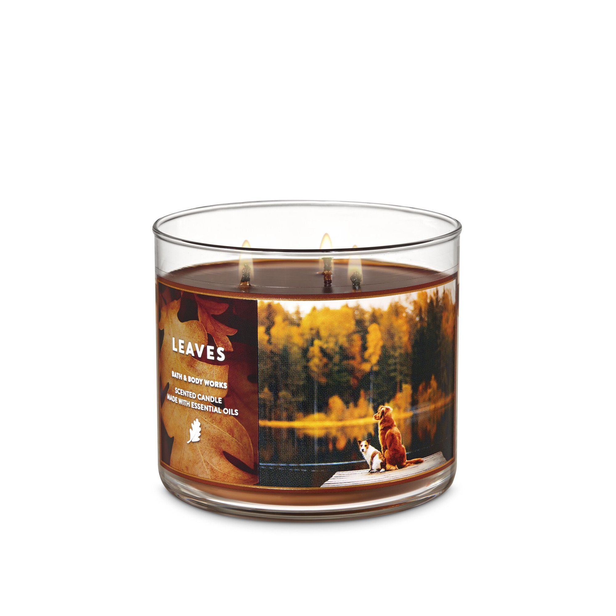 Bath & Body Works Leaves 3 Wick Scented Candle