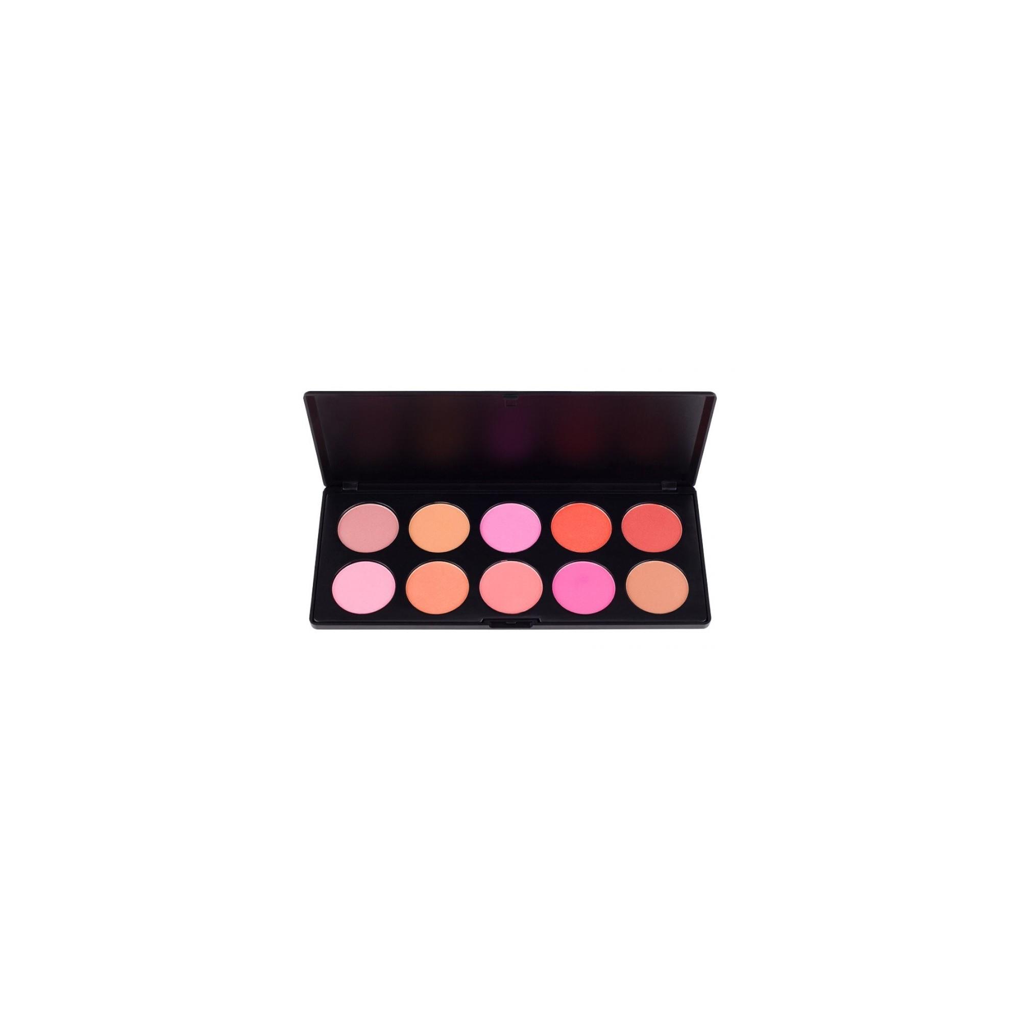 Costal Scents 10 Blush Palette